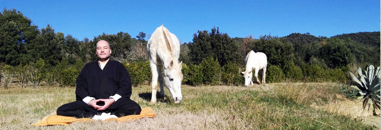 slide_mediacio-cavalls