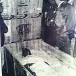 Kiku Mistu expuesto en el interior de la caja recién abierta. Foto: Cristobal Castro